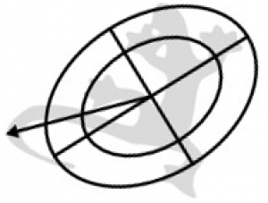 Elliptical approximation of the shape. It provides several control parameters: position, angle, area, ratio of principal axes